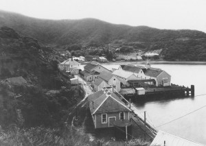 A photo of the quarantine station, a splay of buildings nestled onto the coastline.