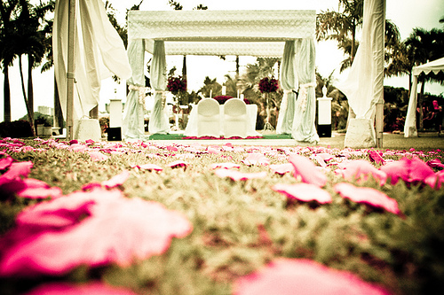 An outdoor wedding pavilion with rose petals scattered in front of it.