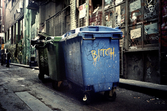 A row of dumpsters in an alley, one of which has been spray-painted with the word BITCH.