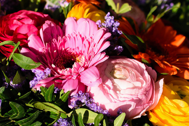 A bouquet of colourful spring flowers