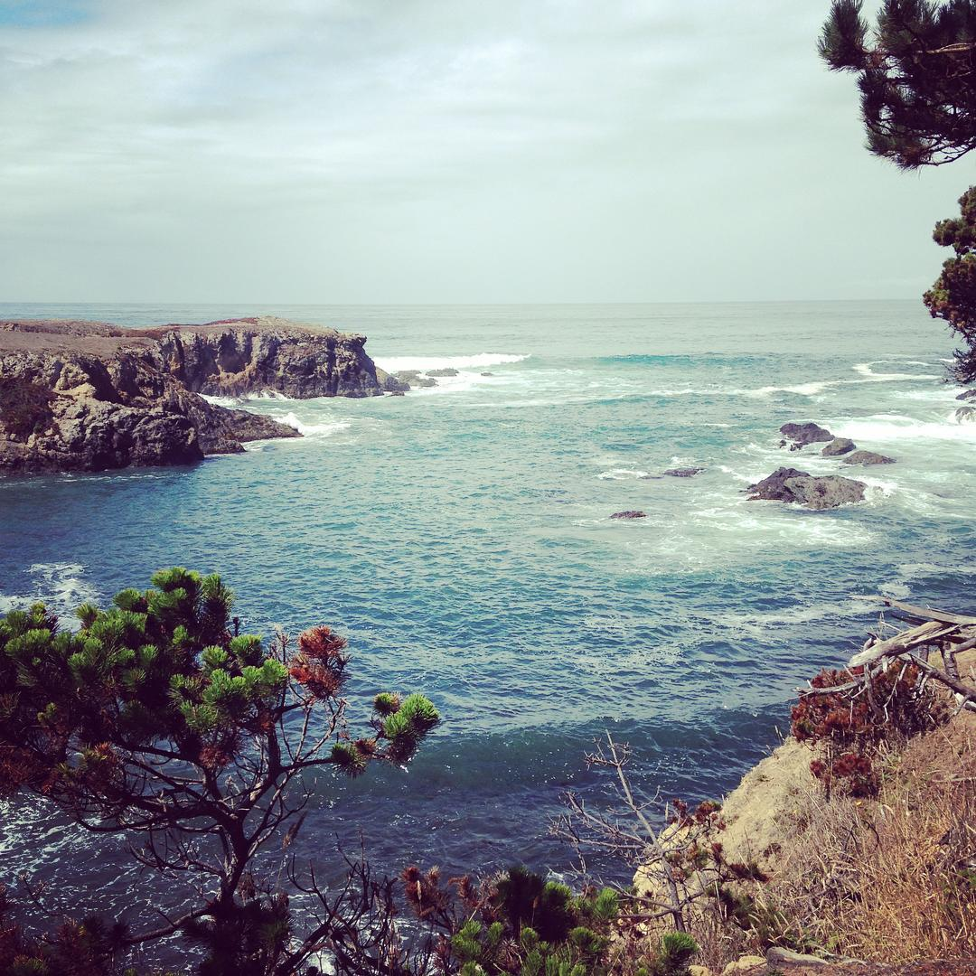 Viewing the Pacific from Belinda Point