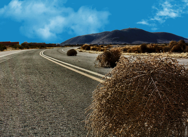 Tumbleweeds drifting down a highway.
