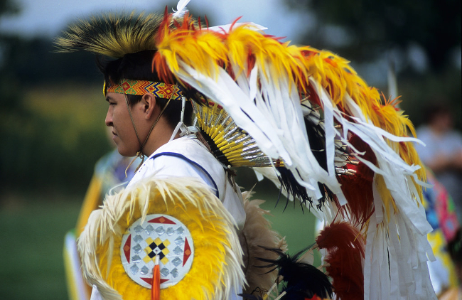 A Native American person wearing full ceremonial regalia.