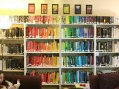 A person seated under a bookshelf arranged in a rainbow of colours.