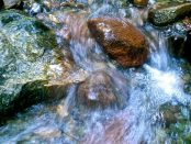 A mountain stream.