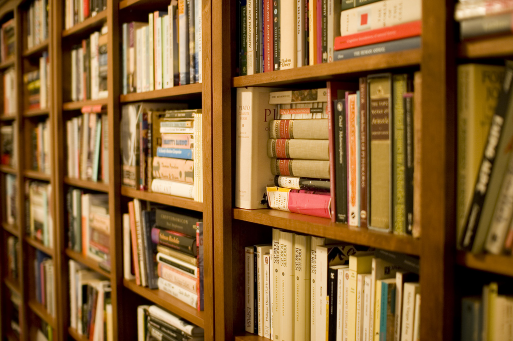 The shelves of a library, filled higgledy-piggledy with books.