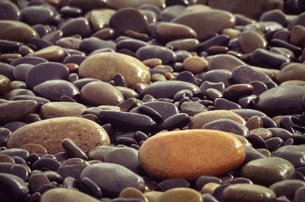 Stones on a beach, glistening with water.
