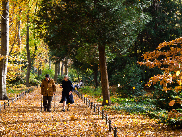 A pair of older adults walking through a garden in fall.