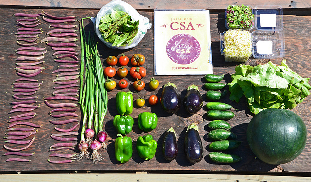 The contents of a CSA box, laid out on a table. They include beans, eggplants, peppers, and lettuce.