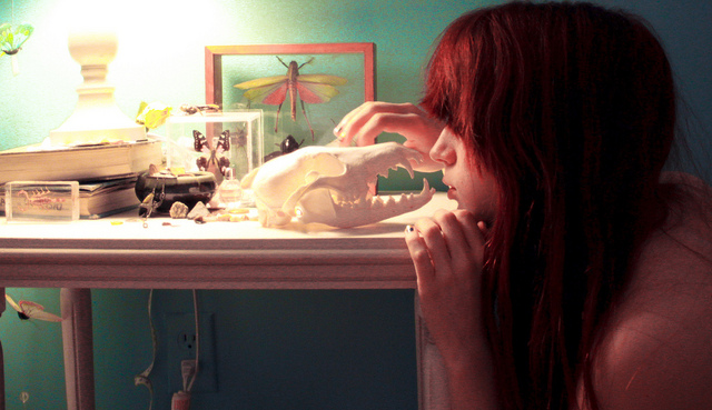 A woman kneeling at a table so she's eye-to-eye with an animal skull.