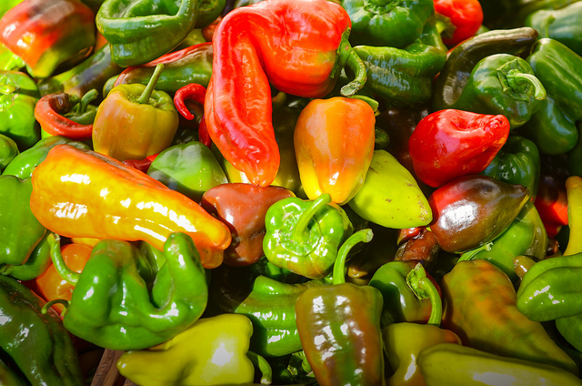 An array of colourful bell peppers