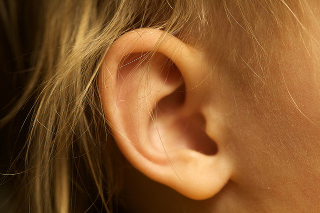 A closeup of someone's ear.