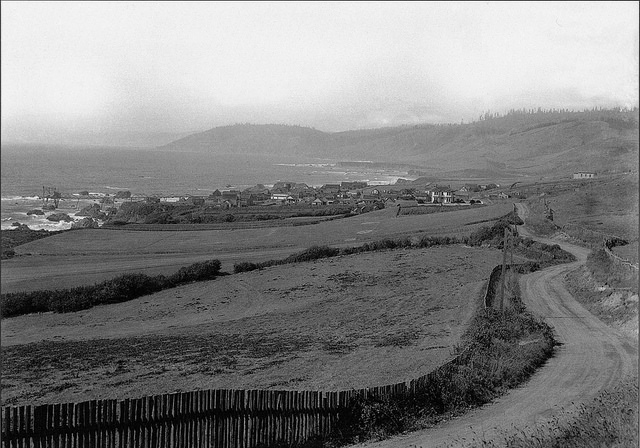 A photograph of Westport California from the late 1800s.