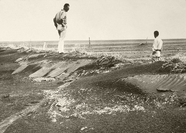 A farmer inspects a barren field in Colorado during the 1930s