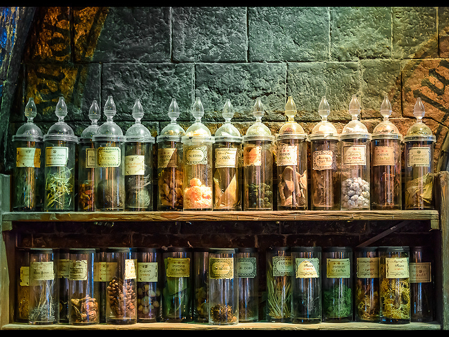 A row of potions ingredients on display at an exhibition.