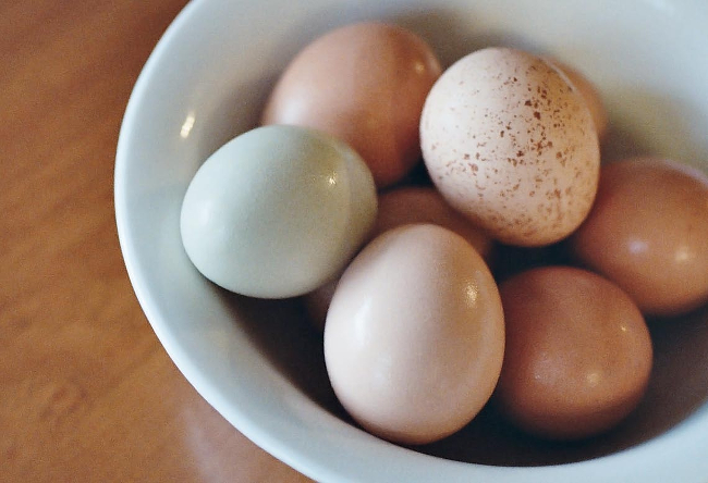 A bowl with an assortment of eggs