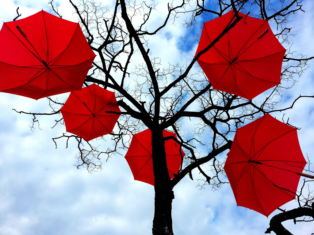 A leafless tree covered in red umbrellas.