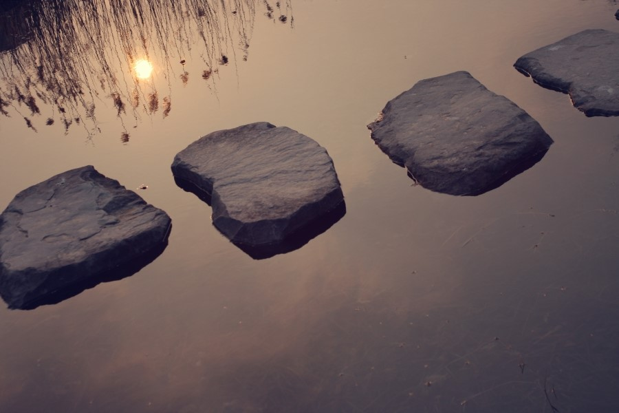 A row of stepping stones in a lake.
