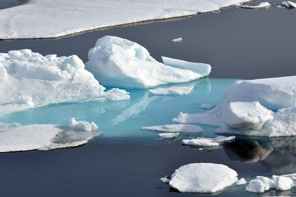 Icebergs floating in the Arctic.