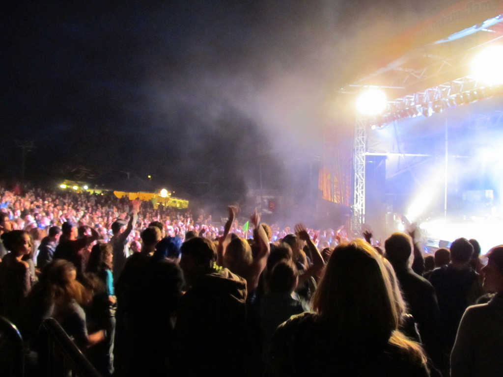 A crowd at a concert.